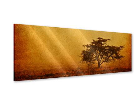 Panoramic Acrylic Print Sunset Mood