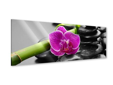Panoramic Acrylic Print Feng Shui Orchid