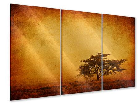 3 Piece Acrylic Print Sunset Mood