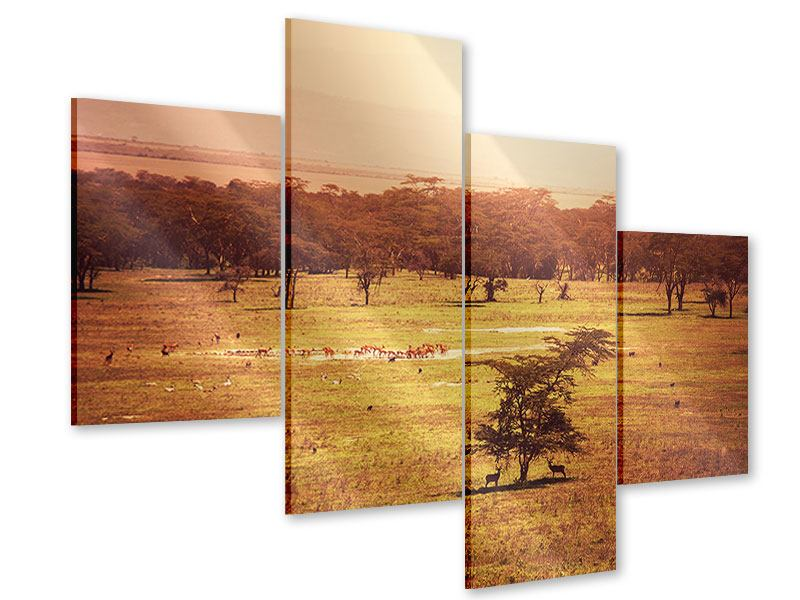 Modern 4 Piece Acrylic Print Picturesque Africa