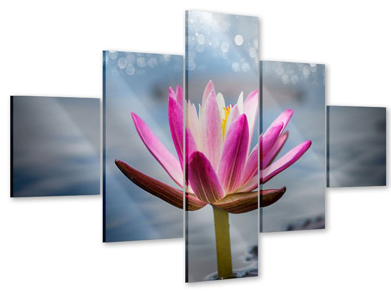5 Piece Acrylic Print Lotus In The Morning Dew