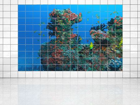 Tile Print The World Of Fish