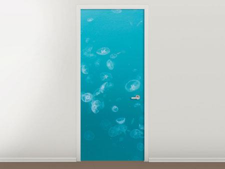 Door Mural Lots Of Jellyfish