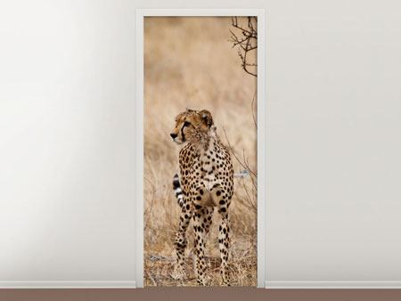 Door Mural Elegant Cheetah