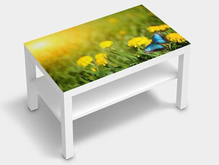 Furniture Foil Dandelion And Butterfly