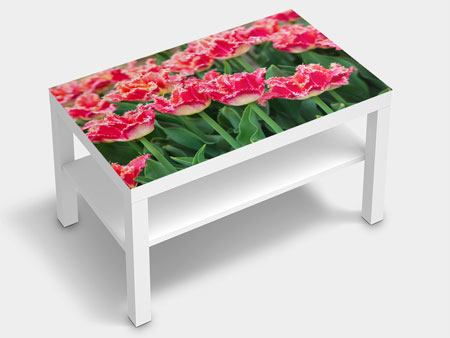 Furniture Foil The Tulips Meadow