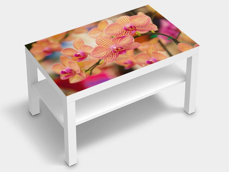 Furniture Foil Exotic Orchids