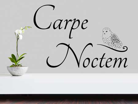 Wall Sticker Carpe Noctem