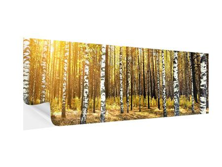 Panoramic Self-Adhesive Poster Birch Forest
