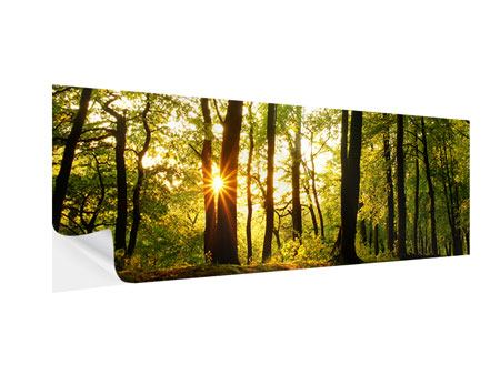 Panoramic Self-Adhesive Poster Sunset Between Trees