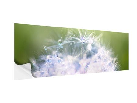 Panoramic Self-Adhesive Poster Dandelion XL In Morning Dew