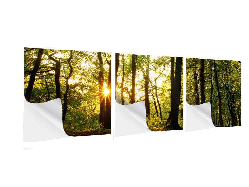 Panoramic 3 Piece Self-Adhesive Poster Sunset Between Trees