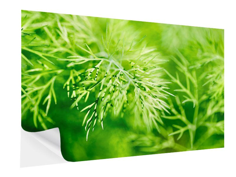 Self-Adhesive Poster XXL Dill