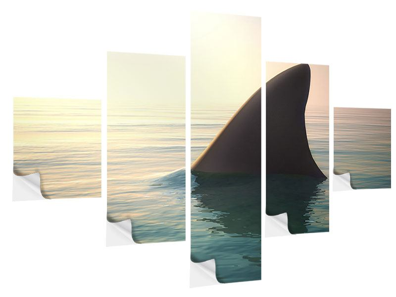 5 Piece Self-Adhesive Poster Shark Fin