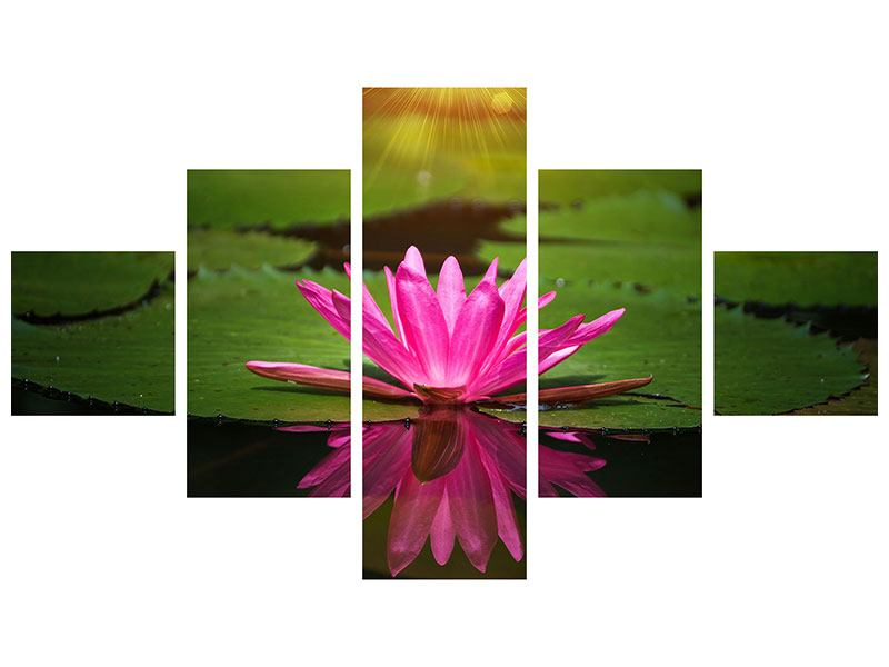 5 Piece Self-Adhesive Poster Lily Reflection