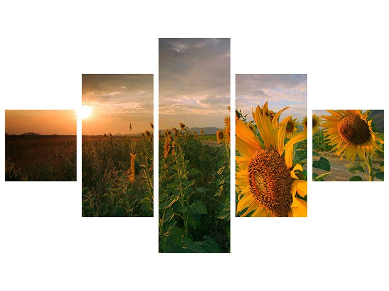 5 Piece Self-Adhesive Poster Sunflowers In Play Of Light