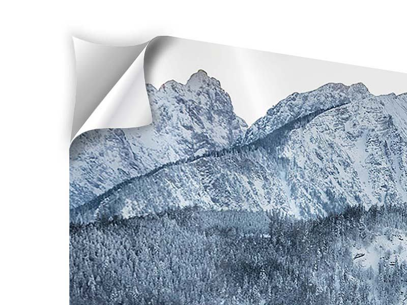 5 Piece Self-Adhesive Poster Photo Wallaper Mountains In Monochrome