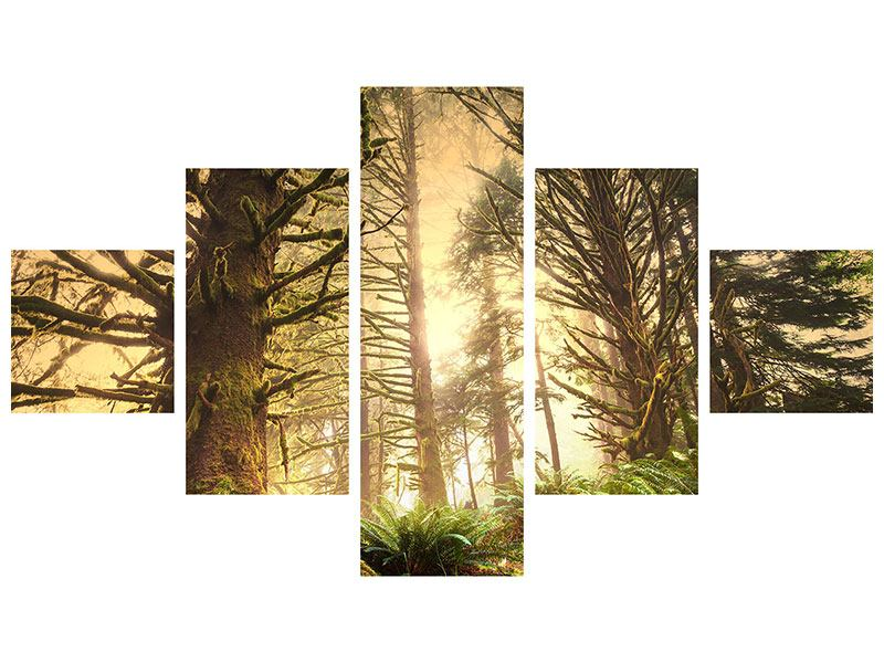 5 Piece Self-Adhesive Poster Sunset In Jungle
