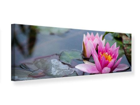 Panoramic Canvas Print The Waterlilies Duo