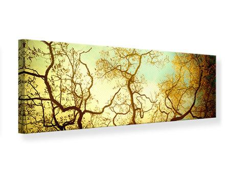 Panoramic Canvas Print Autumn Trees