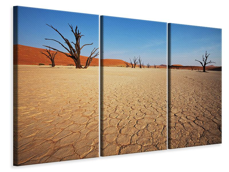 3 Piece Canvas Print Desert