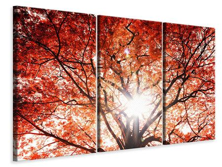 3 Piece Canvas Print Light Of Autumn