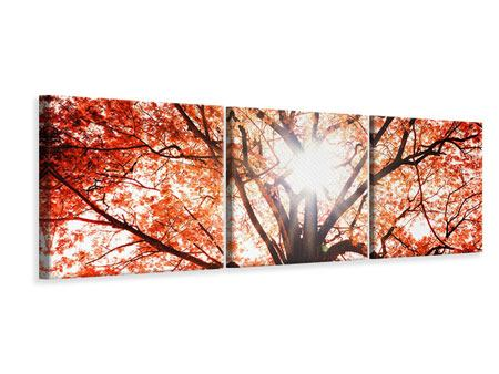 Panoramic 3 Piece Canvas Print Light Of Autumn