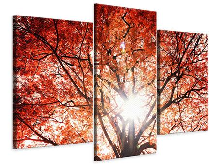 Modern 3 Piece Canvas Print Light Of Autumn