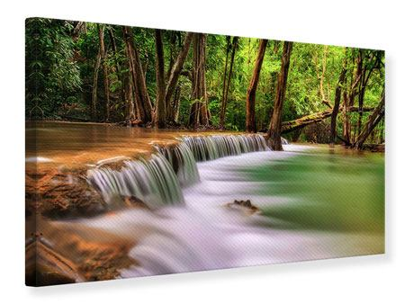Canvas Print Deep Forest