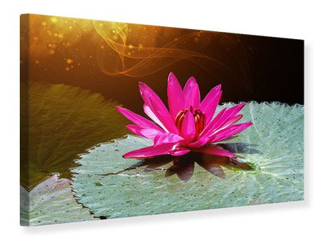 Canvas Print The Frog And The Lily Pad