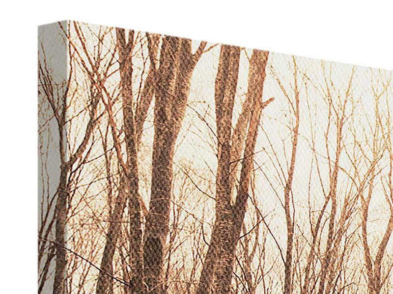 Canvas Print The Bare Forest