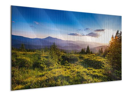 Metallic Print Peaceful Landscape
