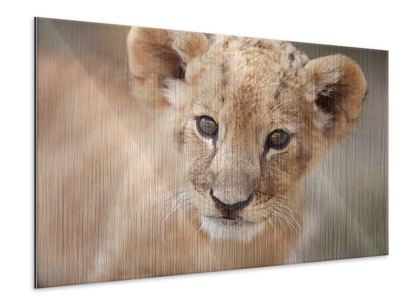 Metallic Print Lion Cub