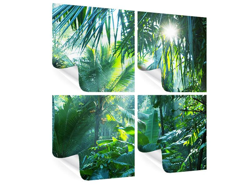 4 Piece Poster In Tropical Forest
